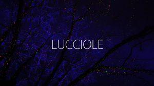 LUCCIOLE LIGHT ART