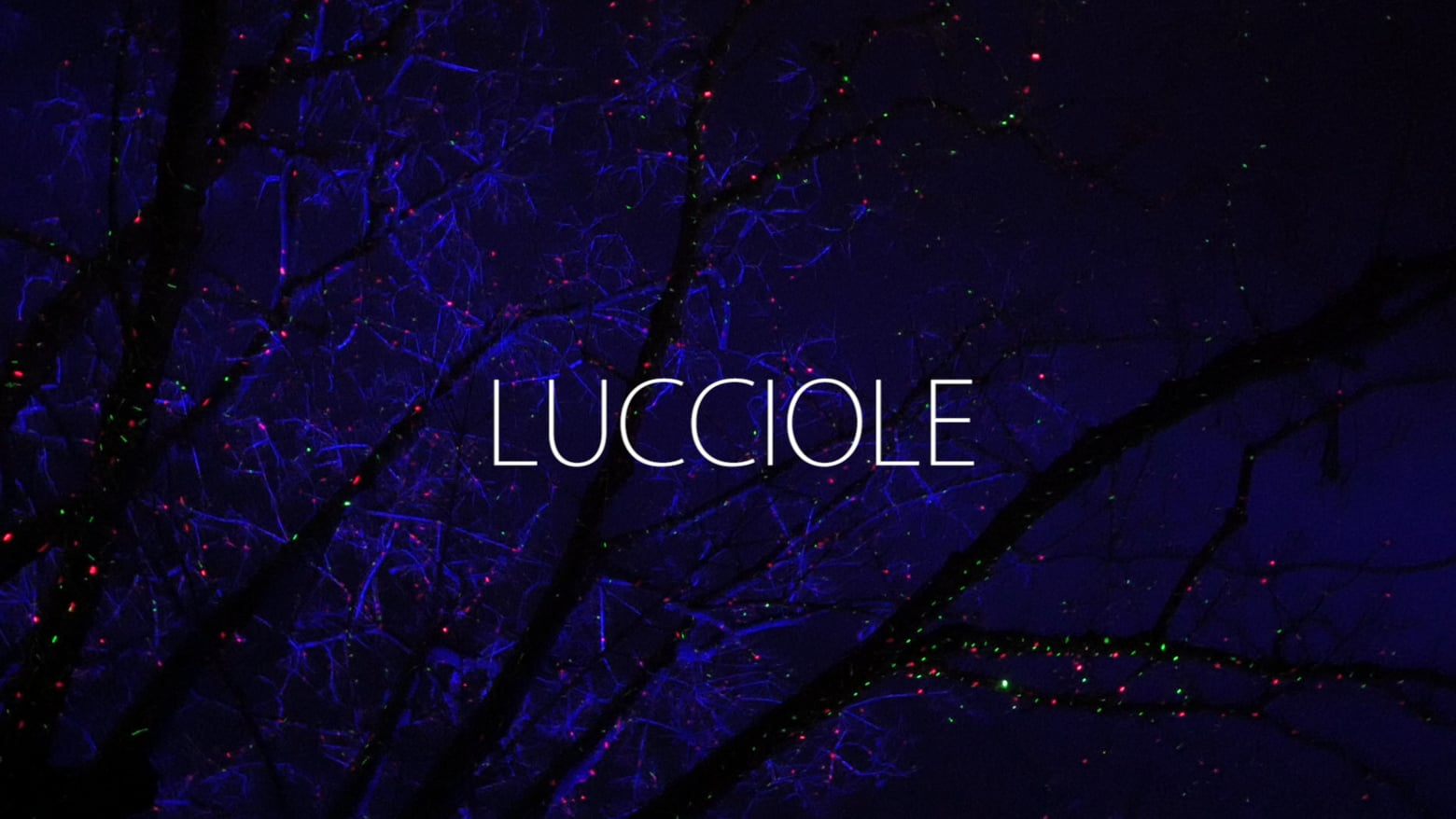LUCCIOLE LIGHT ART